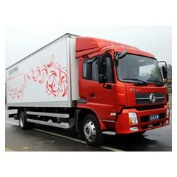 truck Kingrun